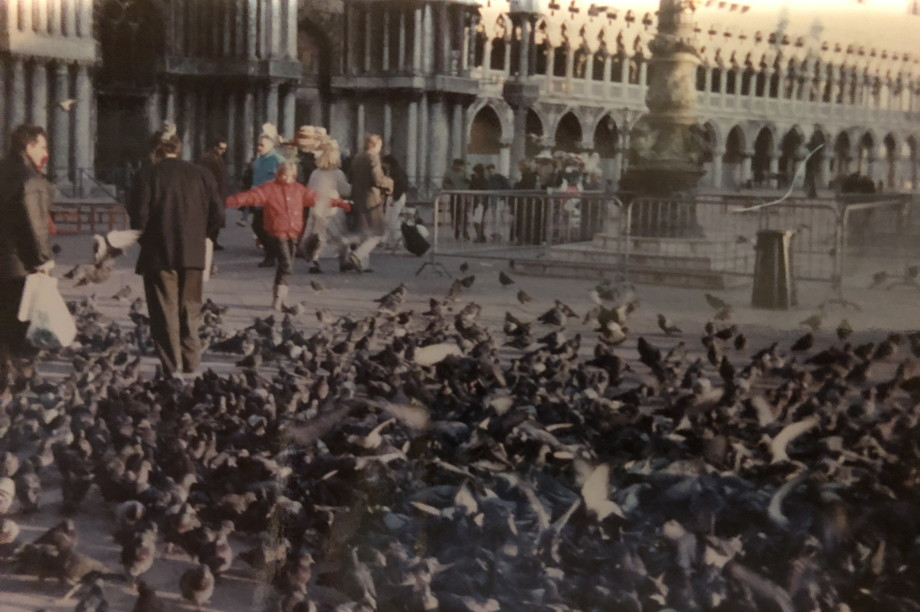 Child running toward a huge swarm of pigeons
