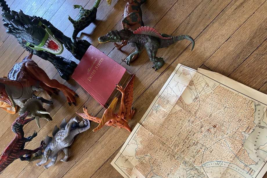 Dinosaurs protecting the book while a map of Washington DC is ignored