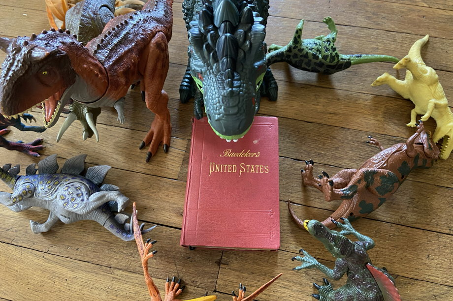 A book surrounded by dinosaurs